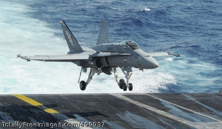 110531-N-OK922-242  PACIFIC OCEAN (May 31, 2011) An F/A-18C Hornet assigned to Strike Fighter Squadron (VFA) 113 makes an arrested landing aboard the Nimitz-class aircraft carrier USS Carl Vinson (CVN 70). Carl Vinson and Carrier Air Wing (CVW) 17 are underway in the U.S. 7th Fleet area of responsibility. (U.S. Navy photo by Mass Communication Specialist Seaman Rosa A. Arzola/Released)