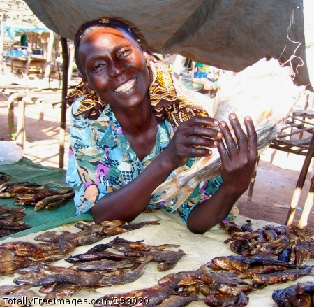 Sudan: Small Steps Improve Lives Esther Moriba sells fish at her stand in a local market in southern Sudan. She received loans from the Sudan Microfinance Institution (SUMI). In 2003 USAID helped establish SUMI, which offers financial services to small-scale entrepreneurs in southern Sudan, with an emphasis on agriculture, women, returned refugees and internally displaced persons. SUMI performs above international standards and continues to grow. Through borrower groups and salary loans, three branches in southern Sudan had disbursed nearly a half million dollars to more than 1,600 clients by February 2005. SUMI's repayment rate is over 98 percent with a portfolio-at-risk rate of less than 6 percent. Moriba is one of SUMI's first clients. With her first loan of $100, she went to Koboko, Uganda, to buy smoked fish and diversify her stall at the local market. Subsequent loans allowed her to buy a bicycle, allowing her to dispatch someone to buy fish for her. Sudan Date: 2006 Photographer: Laura Lartigue / Chemonics