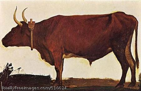 Ox Artist: Bierstadt, Albert, 1830-1902, painter. Medium: Oil on cardboard. Smithsonian Control Number: IAP 03390003