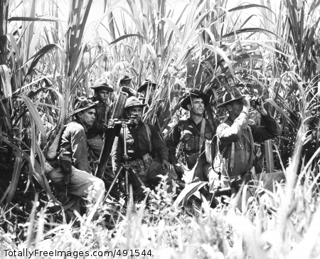 Hispanic Americans The 65th Infantry takes cover in a cane field near Salinas, Puerto Rico, November 1941. Photo Credit: Sep 13, 2007