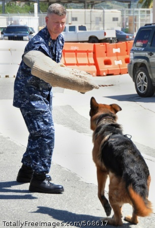 101015-N-7764M-261 GUANTANAMO BAY, Cuba (Oct. 15, 2010) Master Chief Petty Officer of the Navy (MCPON) Rick D. West works with military working dog, Gino, during a tour of Naval Station Guantanamo Bay, Cuba. (U.S. Navy photo by Mass Communication Specialist 3rd Class Leona Mynes/Released)