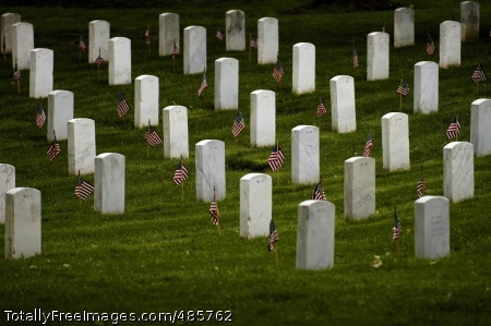 Old Guard Sets Flags stand vigil at gravesites in Arlington National Cemetary. Photo Credit: May 23, 2008