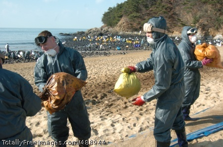 Oil Spill Cleanup 8th U.S. Army Soldiers and Korean Augmentees use a human chain to move bags of oil-covered rags and contaminated sand from the rock-cleaning on the coast (seen in the background) to a collection point higher on Baeknipo Beach, Taean, South Korea.  Photo Credit: Dec 21, 2007