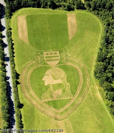 Honoring the Purple Field artist Roger Baker mowed this representation of a modern Purple Heart Medal into a field in Orange County, N.Y.  Photo Credit: Aug 9, 2007