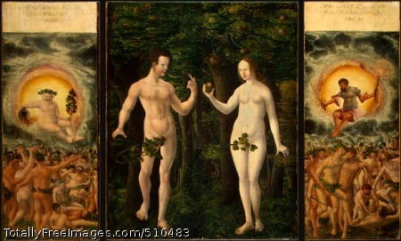 The Fall of Man Altdorfer, Albrecht c.1535; Oil on hardboard transferred from panel;left panel: The Rule of Bacchus, 39 x 15.9 cmmiddle panel: The Fall of Man, 39 x 31.5 cmright panel: The Rule of Mars, 39 x 15.7 cmThe National Gallery of Art, Washington DC, USALeft panel: the x-radiograph indicates a long check near the top of the left-hand corner. A small length of barbe is visible at the right edge; this is the only edge that is clearly original, but there are no strong compositional indications that the panels have been significantly altered. Examination with infrared reflectography reveals underdrawing in what appears to be a liquid medium. There are numerous small losses throughout, most apparent in the area of the inscription, and also an extensive raised crackle.Middle panel: Examination with infrared reflectography revealed only occasional underdrawn strokes, but the x-radiograph indicated pentimenti around Adam's shoulders, arms, hands, and feet, and Eve's left arm, leg, and foot. The background paint overlaps the figures in what was probably a deliberate attempt to reduce their contours. There are several large losses throughout; these seem to have been the result of blistering and may have been the occasion for the marouflage to hardboard. Specifically, there are losses to the left of and above Adam's head, through his chest, and around the lower part of his left leg. At the right of Eve's head is a series of losses that continue down her arm and a circular loss in her left calf. The surface is secure but afflicted with vertical blistering and raised crackle. The vertical join line along the center is inpainted.Right panel: Examination with infrared reflectography reveals underdrawing in the figure of Mars in what appears to be a liquid medium. There are numerous small losses throughout, and these are particularly evident in the area of the inscription. There are losses above and to the left of Mars' head and in his left arm. The surface is secure but exhibits a vertical, raised crackle pattern.The present arrangement of these panels is not the original one. Although they were probably a triptych, the original center panel is no longer extant, and the present center panel once existed as two separate images on the reverse of the wings. Adam was on the reverse of The Rule of Bacchus and Eve was on the reverse of The Rule of Mars. The work existed as a diptych from 1891 on, and photographs from the 1930s and 1940s indicate that the two panels were joined so that while the Adam and Eve panels faced each other correctly, the Bacchus and Mars panels were consequently incorrectly oriented. Around 1950 the panels were thinned to a veneer and marouflaged to hardboard that was subsequently veneered; it is assumed that at this time the fronts and backs were separated and the backs joined together to form a single image of The Fall of Man.