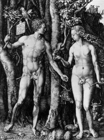 Adam and Eve 1504 (250 kB); Engraving, 24.8 x 19.2 cm (9 3/4 x 7 1/2 in)